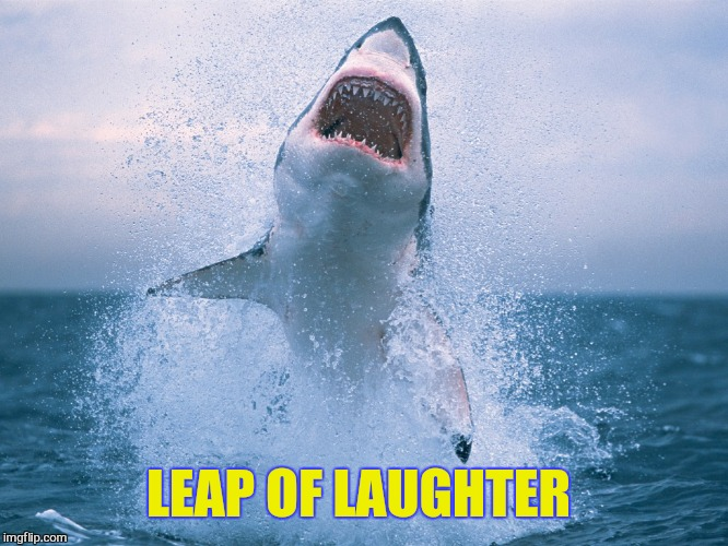 LEAP OF LAUGHTER | made w/ Imgflip meme maker