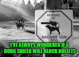 I'VE ALWAYS WONDERED IF A BORG SHIELD WILL BLOCK BULLETS | made w/ Imgflip meme maker