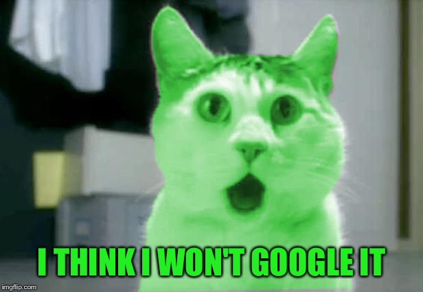 OMG RayCat | I THINK I WON'T GOOGLE IT | image tagged in omg raycat | made w/ Imgflip meme maker