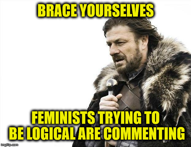 Brace Yourselves X is Coming Meme | BRACE YOURSELVES FEMINISTS TRYING TO BE LOGICAL ARE COMMENTING | image tagged in memes,brace yourselves x is coming | made w/ Imgflip meme maker