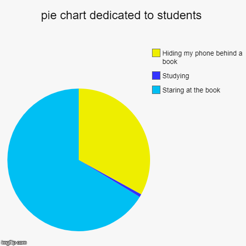 pie chart dedicated to students | Staring at the book, Studying, Hiding my phone behind a book | image tagged in funny,pie charts | made w/ Imgflip chart maker