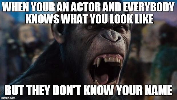 Caeser Rise of the Planet of the Apes | WHEN YOUR AN ACTOR AND EVERYBODY KNOWS WHAT YOU LOOK LIKE BUT THEY DON'T KNOW YOUR NAME | image tagged in caeser rise of the planet of the apes | made w/ Imgflip meme maker