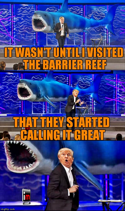 Shark week!! a Raydog event! | IT WASN'T UNTIL I VISITED THE BARRIER REEF THAT THEY STARTED CALLING IT GREAT | image tagged in trump and shark bad pun,shark week,raydog,great,funny,dank memes | made w/ Imgflip meme maker