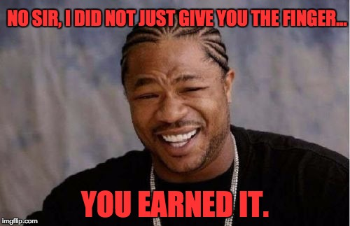 Yo Dawg Heard You |  NO SIR, I DID NOT JUST GIVE YOU THE FINGER... YOU EARNED IT. | image tagged in memes,yo dawg heard you | made w/ Imgflip meme maker