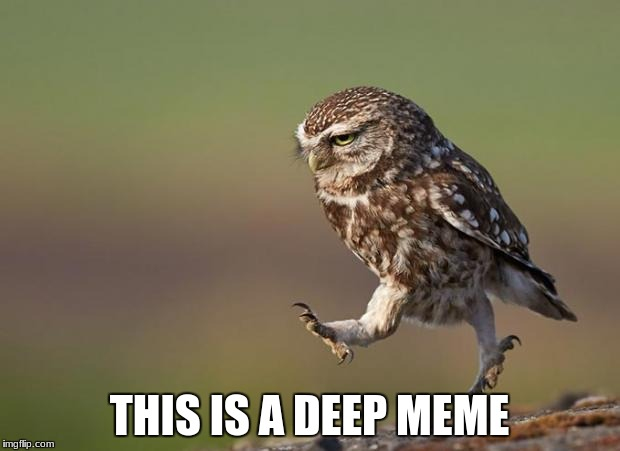 omwowl | THIS IS A DEEP MEME | image tagged in omwowl | made w/ Imgflip meme maker