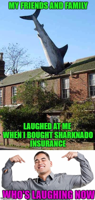 Farmers...we've seen a thing or two!!! Shark Week...A Raydog Event |  MY FRIENDS AND FAMILY; LAUGHED AT ME WHEN I BOUGHT SHARKNADO INSURANCE; WHO'S LAUGHING NOW | image tagged in sharknado insurance,memes,shark week,farmers,sharks,animals | made w/ Imgflip meme maker