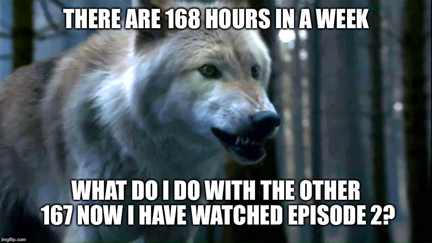 Direwolf | THERE ARE 168 HOURS IN A WEEK WHAT DO I DO WITH THE OTHER 167 NOW I HAVE WATCHED EPISODE 2? | image tagged in direwolf | made w/ Imgflip meme maker