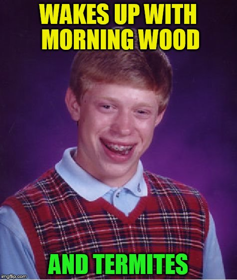 Bad Luck Brian (Stolen from pureserenity524) | WAKES UP WITH MORNING WOOD AND TERMITES | image tagged in memes,bad luck brian,stolen memes week,stolen memes,pureserenity524,termites | made w/ Imgflip meme maker