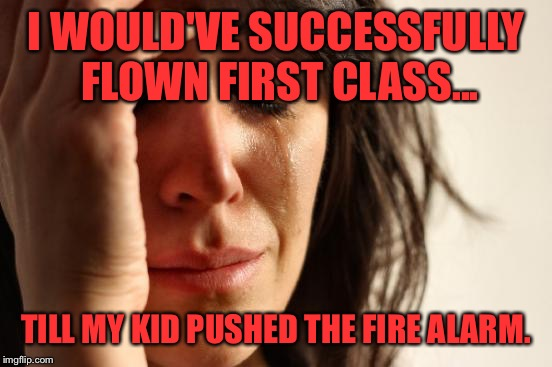 It all went downhill.. | I WOULD'VE SUCCESSFULLY FLOWN FIRST CLASS... TILL MY KID PUSHED THE FIRE ALARM. | image tagged in memes,first world problems | made w/ Imgflip meme maker