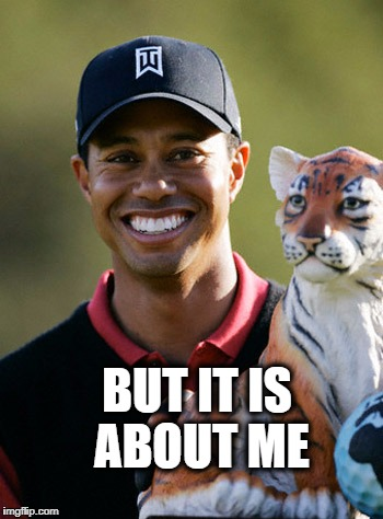Tigers Tiger | BUT IT IS ABOUT ME | image tagged in tigers tiger | made w/ Imgflip meme maker