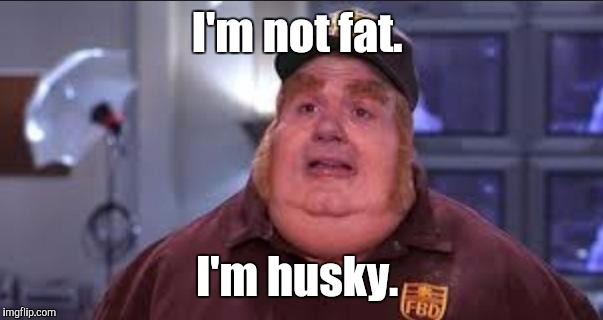 I'm not fat. I'm husky. | made w/ Imgflip meme maker