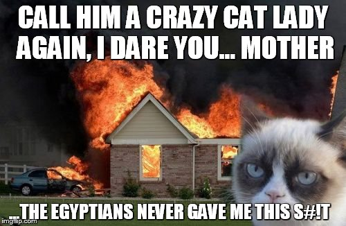 Burn Kitty Meme | CALL HIM A CRAZY CAT LADY AGAIN, I DARE YOU... MOTHER ...THE EGYPTIANS NEVER GAVE ME THIS S#!T | image tagged in memes,burn kitty,grumpy cat | made w/ Imgflip meme maker
