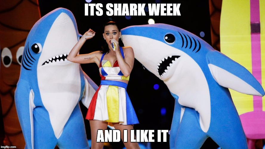ITS SHARK WEEK AND I LIKE IT | made w/ Imgflip meme maker