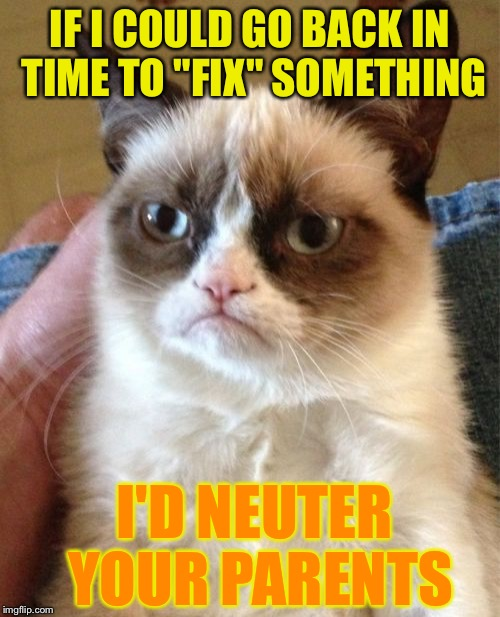 "A repost of a Socrates meme! | IF I COULD GO BACK IN TIME TO ""FIX"" SOMETHING I'D NEUTER YOUR PARENTS 