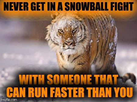 NEVER GET IN A SNOWBALL FIGHT WITH SOMEONE THAT CAN RUN FASTER THAN YOU | made w/ Imgflip meme maker