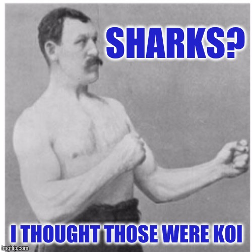 Overly Manly Man, Shark Week Edition | SHARKS? I THOUGHT THOSE WERE KOI | image tagged in memes,overly manly man,shark,shark week,hyperdimension neptunia | made w/ Imgflip meme maker