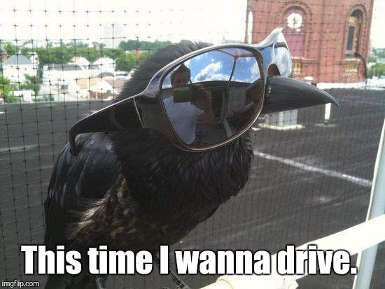 This time I wanna drive. | made w/ Imgflip meme maker