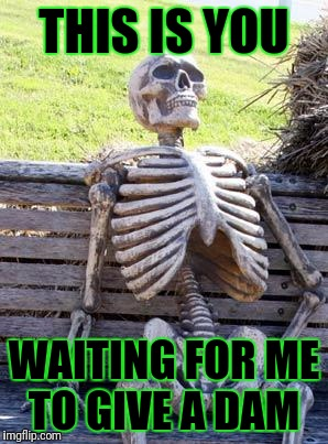Waiting Skeleton Meme | THIS IS YOU WAITING FOR ME TO GIVE A DAM | image tagged in memes,waiting skeleton | made w/ Imgflip meme maker
