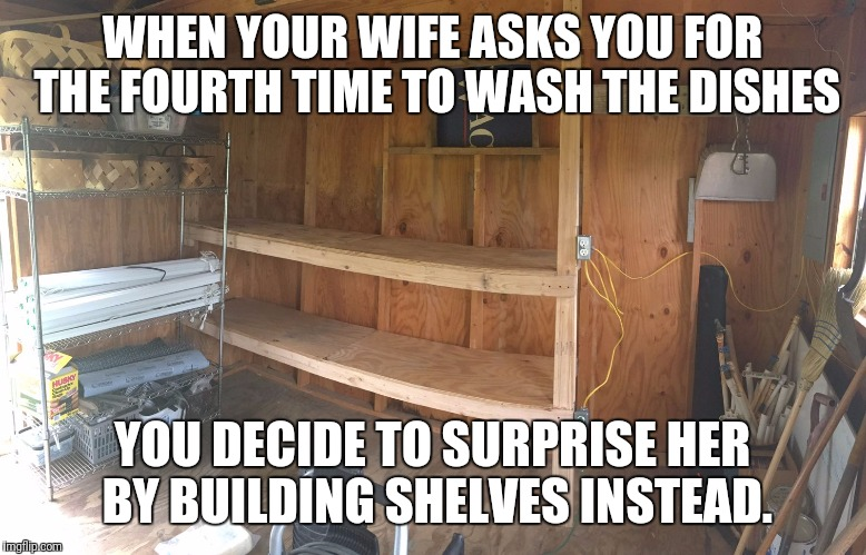 WHEN YOUR WIFE ASKS YOU FOR THE FOURTH TIME TO WASH THE DISHES YOU DECIDE TO SURPRISE HER BY BUILDING SHELVES INSTEAD. | image tagged in husband,wife | made w/ Imgflip meme maker