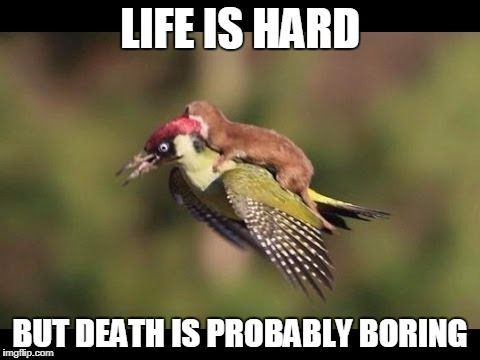 A Thought That Keeps Me Up At Night | LIFE IS HARD BUT DEATH IS PROBABLY BORING | image tagged in motivational,self-help,absurdity,silly,truth | made w/ Imgflip meme maker