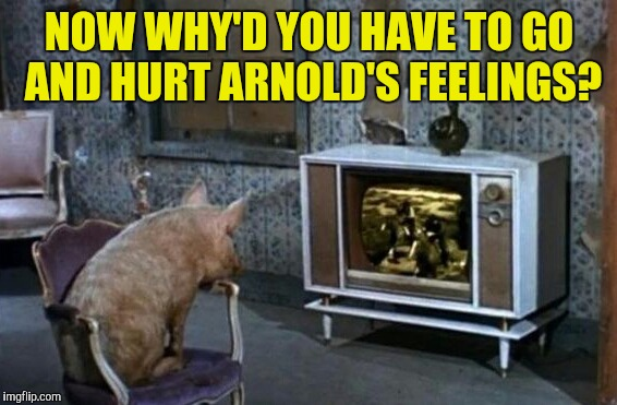 NOW WHY'D YOU HAVE TO GO AND HURT ARNOLD'S FEELINGS? | made w/ Imgflip meme maker