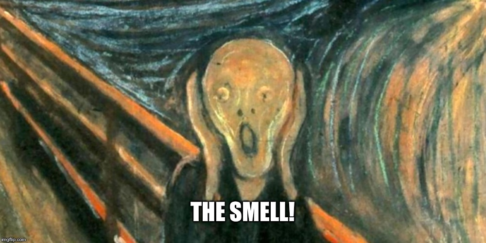 THE SMELL! | made w/ Imgflip meme maker