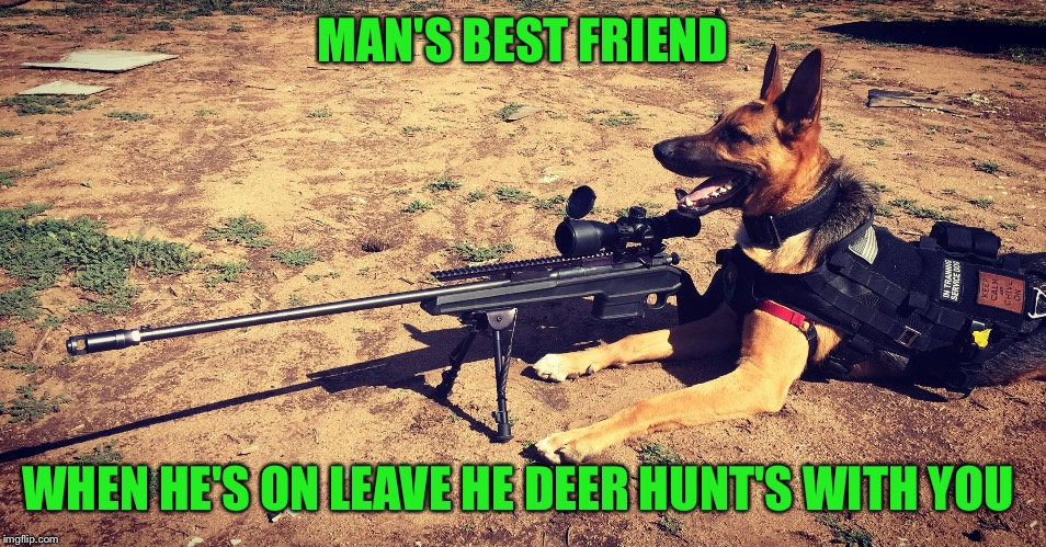 Sniper Dog | MAN'S BEST FRIEND WHEN HE'S ON LEAVE HE DEER HUNT'S WITH YOU | image tagged in sniper dog | made w/ Imgflip meme maker