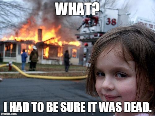 Disaster Girl Meme | WHAT? I HAD TO BE SURE IT WAS DEAD. | image tagged in memes,disaster girl | made w/ Imgflip meme maker