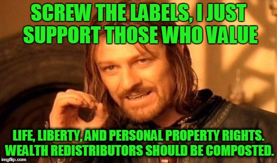 One Does Not Simply Meme | SCREW THE LABELS, I JUST SUPPORT THOSE WHO VALUE LIFE, LIBERTY, AND PERSONAL PROPERTY RIGHTS. WEALTH REDISTRIBUTORS SHOULD BE COMPOSTED. | image tagged in memes,one does not simply | made w/ Imgflip meme maker