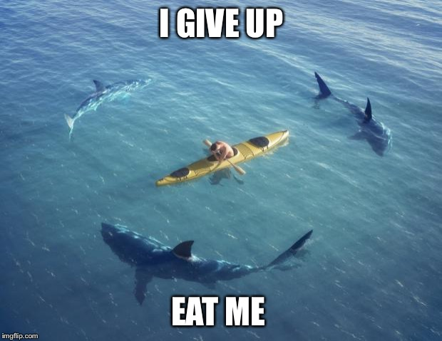 Sharks | I GIVE UP EAT ME | image tagged in sharks | made w/ Imgflip meme maker