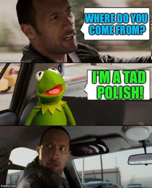 WHERE DO YOU COME FROM? I'M A TAD POLISH! | made w/ Imgflip meme maker