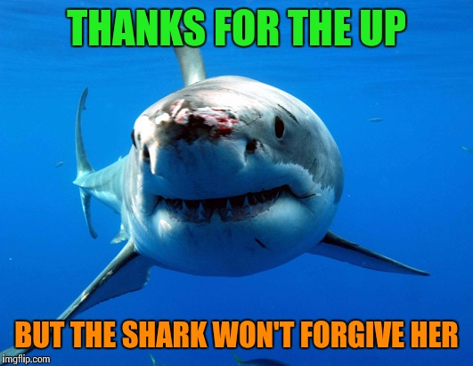 THANKS FOR THE UP BUT THE SHARK WON'T FORGIVE HER | made w/ Imgflip meme maker