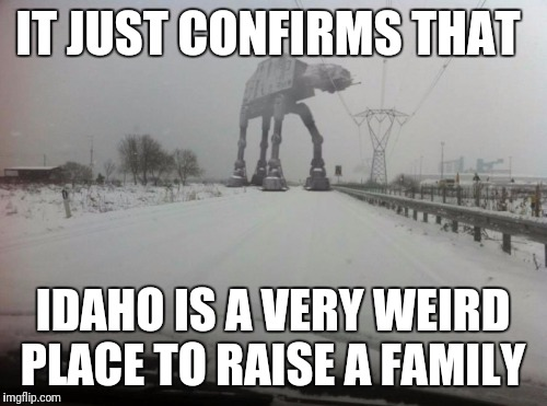 IT JUST CONFIRMS THAT IDAHO IS A VERY WEIRD PLACE TO RAISE A FAMILY | image tagged in meanwhile in idaho | made w/ Imgflip meme maker