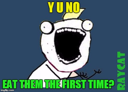 Y U No X All The Y | Y U NO EAT THEM THE FIRST TIME? | image tagged in y u no x all the y | made w/ Imgflip meme maker