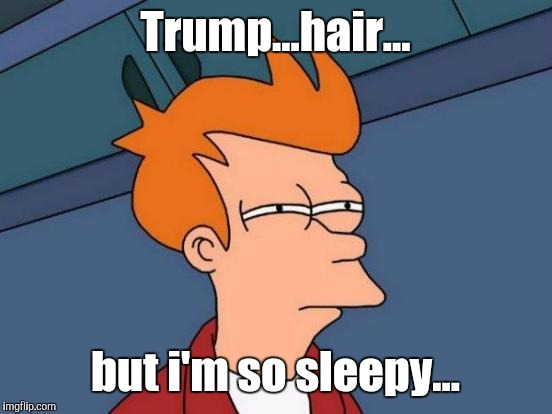 Futurama Fry Meme | Trump...hair... but i'm so sleepy... | image tagged in memes,futurama fry | made w/ Imgflip meme maker
