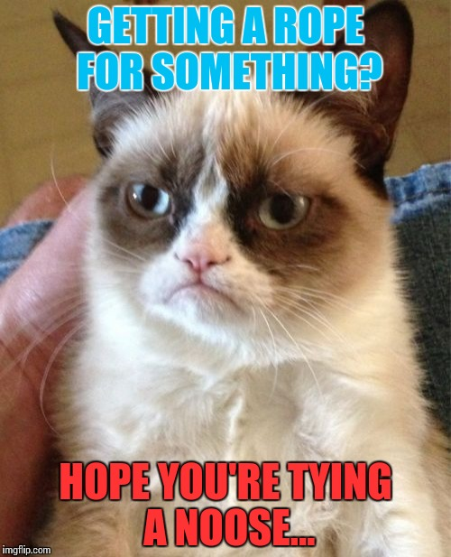 Grumpy Cat gives new ideas | GETTING A ROPE FOR SOMETHING? HOPE YOU'RE TYING A NOOSE... | image tagged in memes,grumpy cat,funny | made w/ Imgflip meme maker