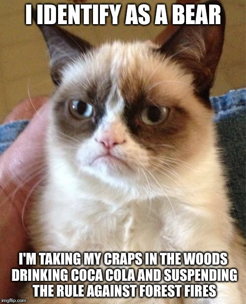 Grumpy Cat Meme | I IDENTIFY AS A BEAR I'M TAKING MY CRAPS IN THE WOODS DRINKING COCA COLA AND SUSPENDING THE RULE AGAINST FOREST FIRES | image tagged in memes,grumpy cat | made w/ Imgflip meme maker