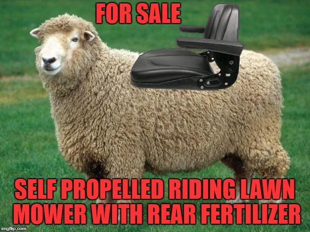 FOR SALE SELF PROPELLED RIDING LAWN MOWER WITH REAR FERTILIZER | image tagged in lawnmower | made w/ Imgflip meme maker