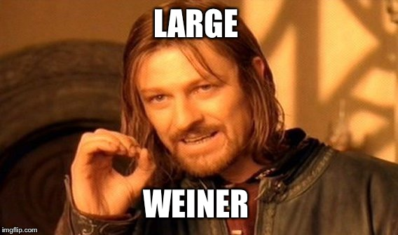 One Does Not Simply Meme | LARGE WEINER | image tagged in memes,one does not simply | made w/ Imgflip meme maker