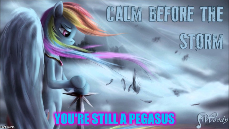 YOU'RE STILL A PEGASUS | made w/ Imgflip meme maker