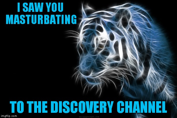 I SAW YOU MASTURBATING TO THE DISCOVERY CHANNEL | made w/ Imgflip meme maker