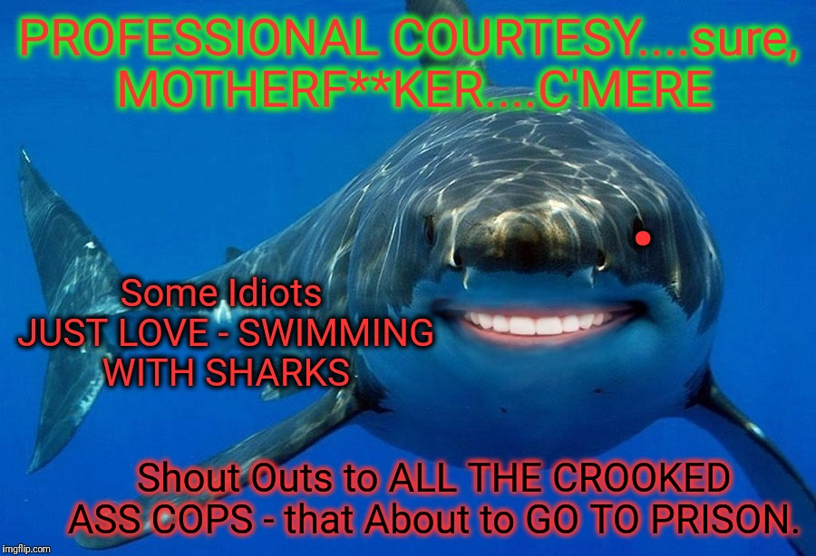 Shark Week. Sink or Swim. I getz M¥ne EITHER way. |  PROFESSIONAL COURTESY....sure, MOTHERF**KER....C'MERE; . Some Idiots JUST LOVE - SWIMMING WITH SHARKS; Shout Outs to ALL THE CROOKED ASS COPS - that About to GO TO PRISON. | image tagged in shark week,specialist hugh mungus representative corporate payee,obstruction of justice,and justice for all,i know fuck me right | made w/ Imgflip meme maker