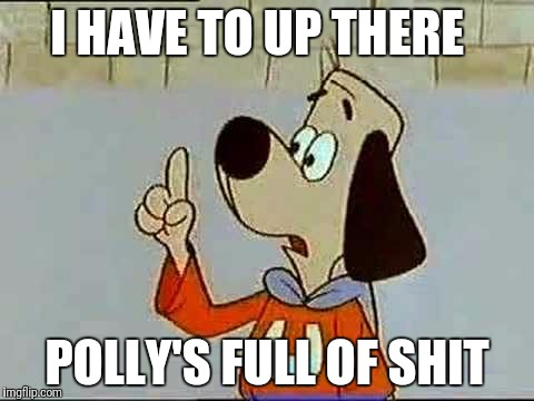 Underdog | I HAVE TO UP THERE POLLY'S FULL OF SHIT | image tagged in underdog | made w/ Imgflip meme maker