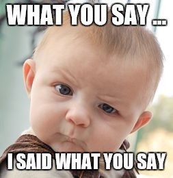 Skeptical Baby Meme | WHAT YOU SAY ... I SAID WHAT YOU SAY | image tagged in memes,skeptical baby | made w/ Imgflip meme maker