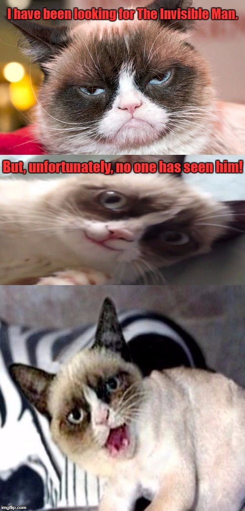 Bad Pun Grumpy Cat | I have been looking for The Invisible Man. But, unfortunately, no one has seen him! | image tagged in bad pun grumpy cat,grumpy cat,memes | made w/ Imgflip meme maker