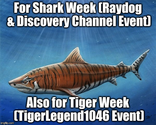 For Shark Week (Raydog & Discovery Channel Event) Also for Tiger Week (TigerLegend1046 Event) | made w/ Imgflip meme maker