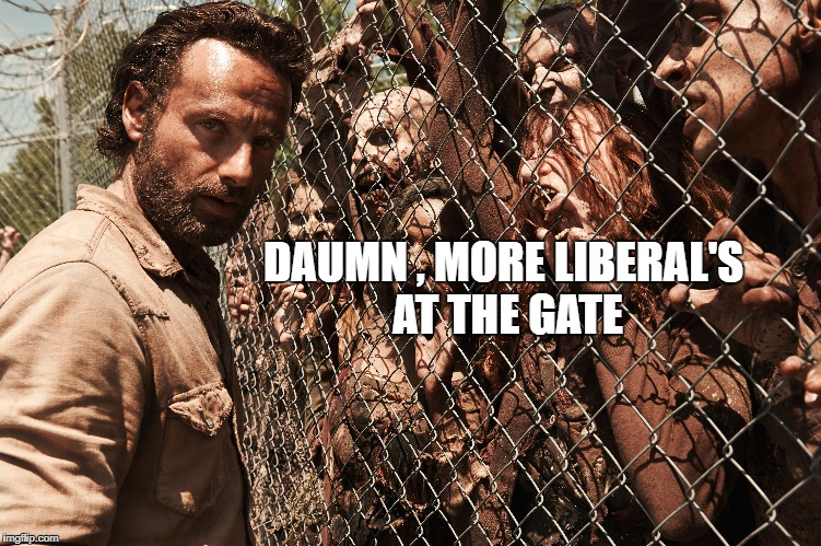 DAUMN , MORE LIBERAL'S AT THE GATE | image tagged in the walking dead,liberals,zombies | made w/ Imgflip meme maker