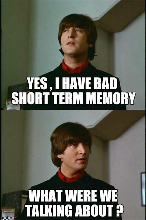 Philosophical John | YES , I HAVE BAD SHORT TERM MEMORY WHAT WERE WE TALKING ABOUT ? | image tagged in philosophical john | made w/ Imgflip meme maker