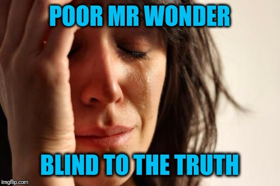 First World Problems Meme | POOR MR WONDER BLIND TO THE TRUTH | image tagged in memes,first world problems | made w/ Imgflip meme maker