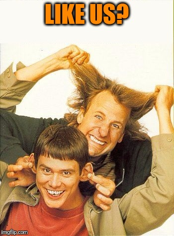 DUMB and dumber | LIKE US? | image tagged in dumb and dumber | made w/ Imgflip meme maker
